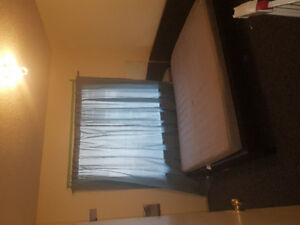 Subletting furnished room in vegetarian - female roommate wanted