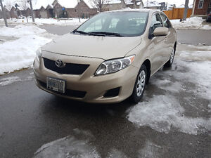 2010 Toyota Corolla - No Accident/Excellent Condition/Certified