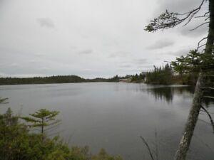 Cottage Lot on a pond - Salmonier Line