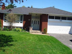 Home improvements, renovations – 10% Spring discount