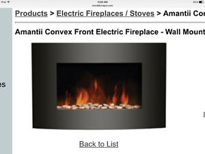 Wall mount elecric fireplace