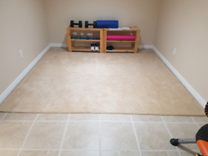 Area Rug Buy Or Sell Indoor Home Items In Peterborough