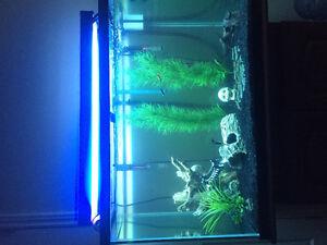 FISH TANK 80 GALLON (NEED GONE ASAP)