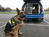 2d17f2c529 2012 Vauxhall Astravan 1.7CDTi 16v K9 UNIT DOG VAN FITTED KENNELS NOT EX  POLICE