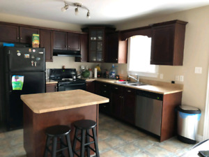 Room for rent (North end area)
