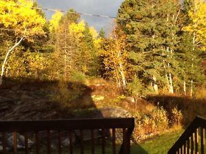 Beau jumelé libre immédiatement.Quartier recherché à Alma!!! Lac-Saint-Jean Saguenay-Lac-Saint-Jean image 4