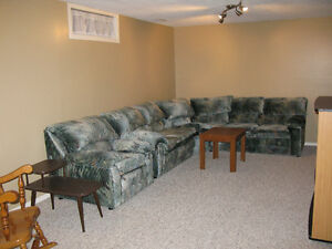 Okotoks - Central Location, spacious, one bedroom basement suite
