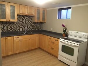 Bowmanville one bedroom lower level apartment all inclusive