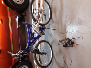 Mountain bike 200.00