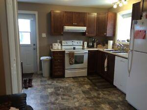 2 bedroom walkin ground level Apartment !st month free