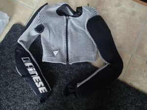 Ski Racing Protection  Arm Pads