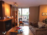 2 Bedroom Luxury Condo for 6 Month Min Lease (Cleaning Incl)