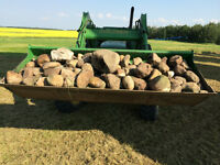Landscaping Rocks and Boulders - Various Sizes