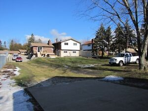Nearly Half an Acre in Mannheim W/Detached Heated Shop W/Hoist!