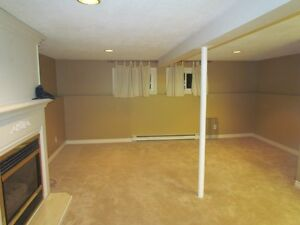 basement apartment in Newmarket