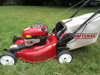 lawn mowing and yard maintenance