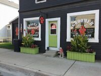 GROOMER HAS IT!   OCTOBER:  TIME FOR THANKS & TREATS!
