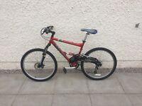 Team Saracen Ikon mountain bike