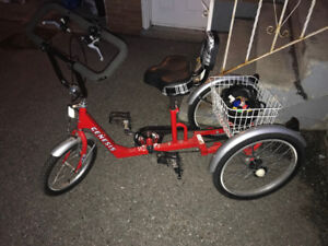 Mobility Teen Tricycle
