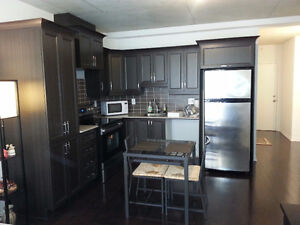 1 bedroom condo for rent - Heart of Downtown 1235 Bishop - 7th