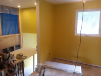 Expert painter available