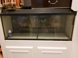 Fishtank only 100cm x 46cm x 35cm