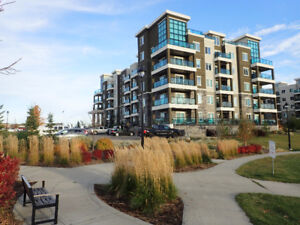 Upgraded Condo in the Heart of Windermere: Excellent Rental