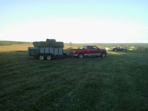 Quality square bales hay