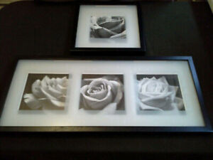Blooming Rose Shadow Boxes