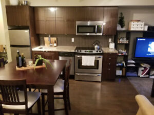 Furnished 1 Bedroom Apartment in Downtown Toronto