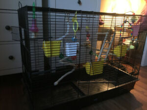 large bird cage, toys and food trays