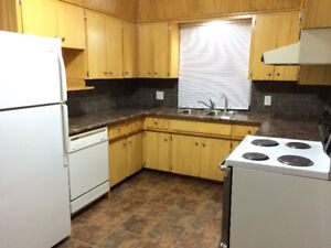 Main Floor and Basement Suites for Rent