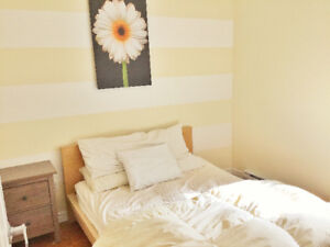 Quinpool Road Luxury 1 Bed Den - Everything Included!