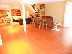 """New Beautiful Walkout Basement Apartment for Rent - Quite Area"""""""