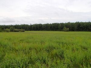 93.27± Title Acres – Unreserved Auction - Athabasca, AB