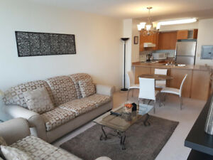 Yonge & Eglinton Fully Furnished Available January 01, 2019