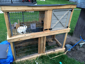 Rabbit hutch castle