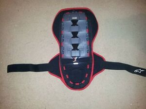 Alpine stars spinal protection size small