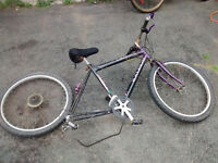 Raleigh Tomahawk Mountain Bike – for parts or Repair