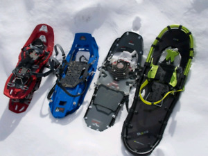 WANTED: Snow shoes or cross country skis