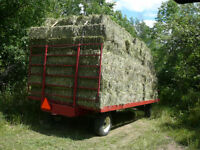 Horse Hay For Sale - Small Square