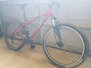 Specialized Mtn Bike FOR SALE