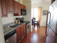 Partially Furnished 1 Bedroom Condo Chateau Royale Hamilton