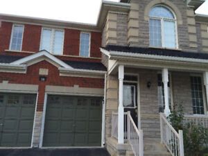 Basement for rent very spacious newly constructed in Markham