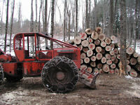 Small scale logger looking for work