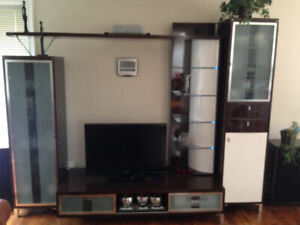 Italian Entertainment Unit polished with lights on glass shelves