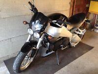 Rare!!! Buell XB9 SX Lightning