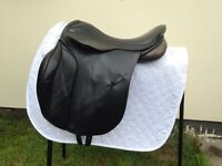 "17"" Albion selecta black saddle Med-wide (with jump blocks)"