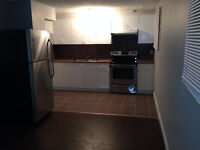 2 Bedroom Suite Lower level in Castleridge NE Calgary 16th Sep