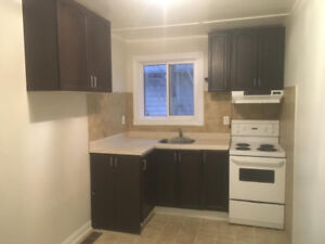 Clean 1 bedroom unit for rent Keswick , includes utilities